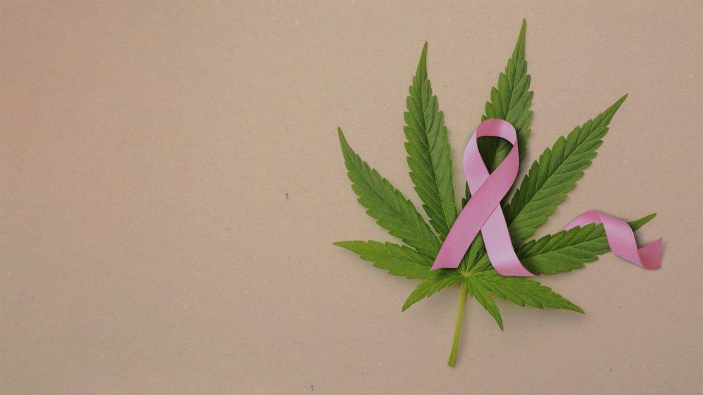 Není těžké si představit, čeho se pacienti trpící rakovinou obávají. Zdroj: internet