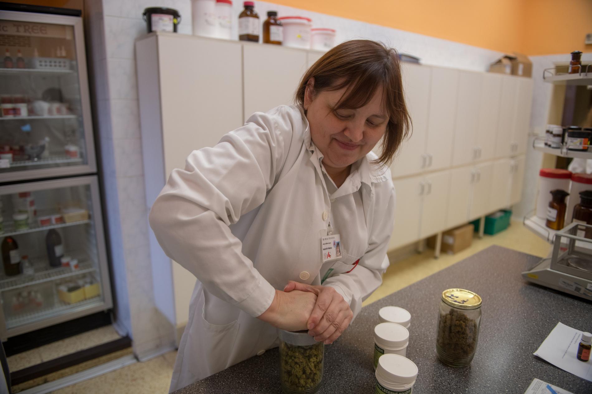 Vedoucí lékárny Mgr. Monika Pecháčková se chystá připravovat tobolky pro pacienty.