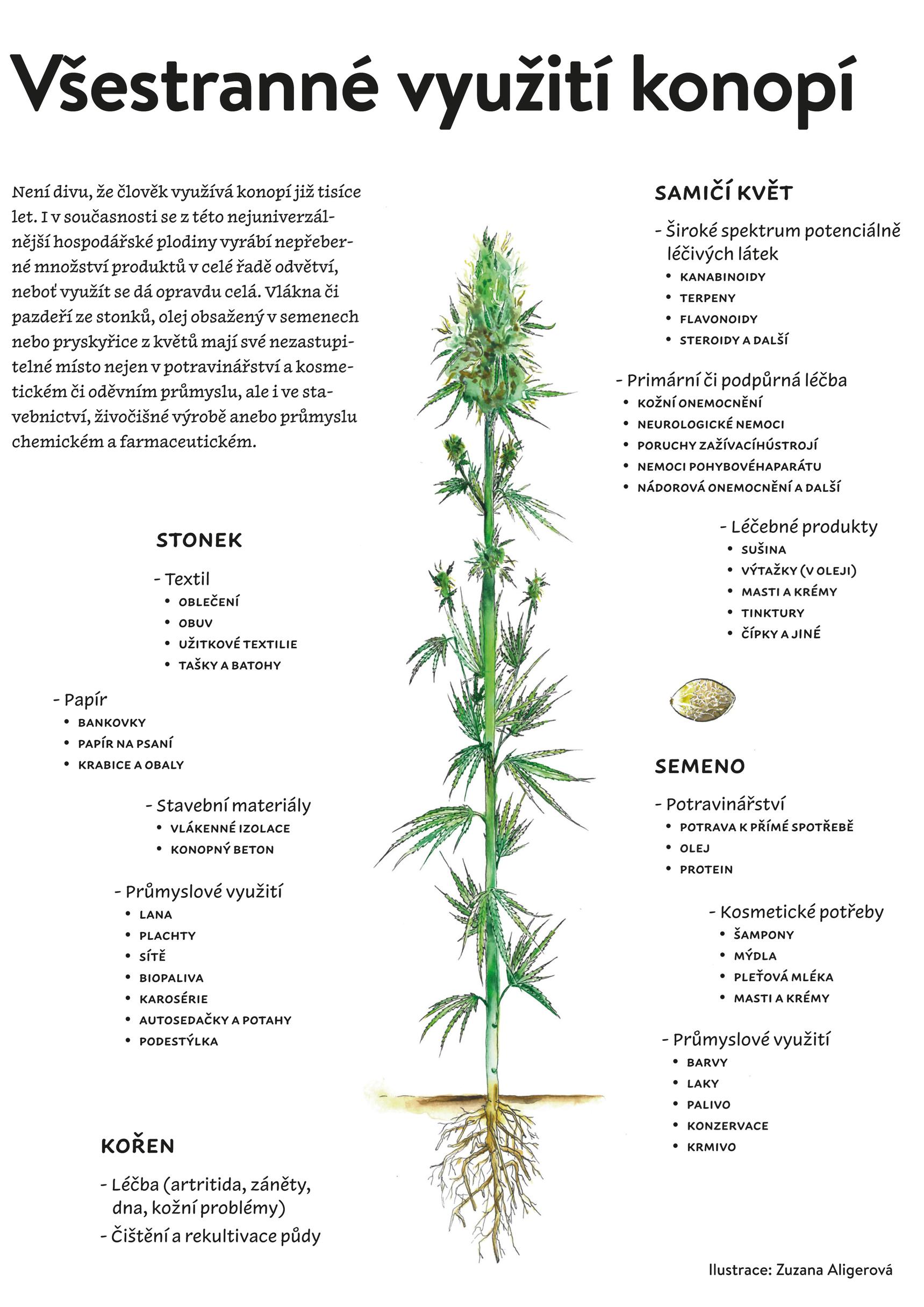 Infografika z magazínu Konopí č. 4