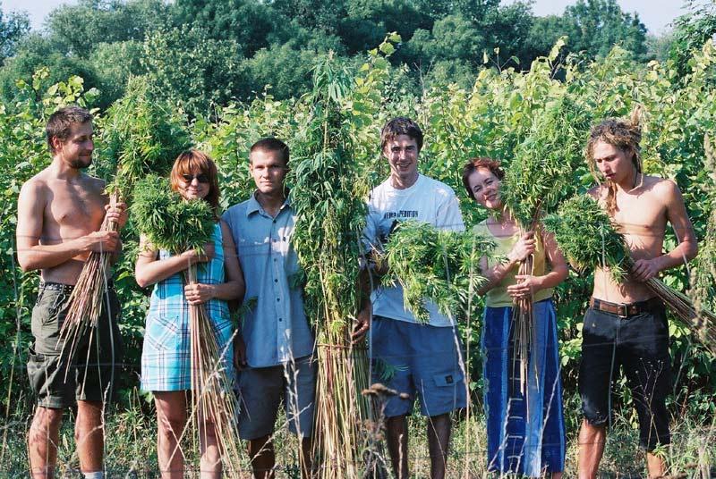 Kdysi dávno na poli dnes významní členové konopné scény například Hana Gabrielové (druhá zleva), Michal Ruman (uprostřed v bílém) a Robert Veverka (napravo). Zdroj: Archiv Konopy