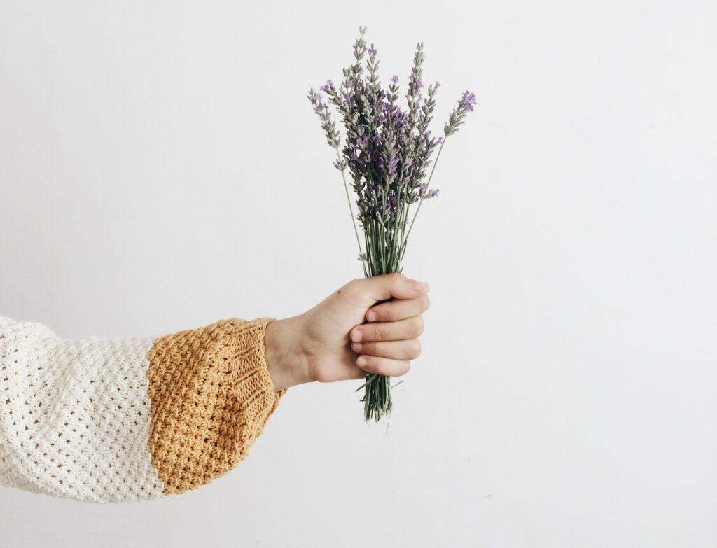 Levandule má zklidňující účinky, pomůže od stresu a s nespavostí.