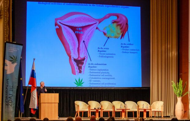 Lumír Hanuš přednáší o svém výzkumu léčby endometriózy konopím.