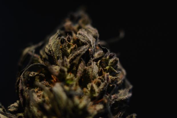 Na to, aby dokázal kanabinoid vyvolat psychoaktivní účinek, musí mít v řetězci alespoň tři uhlíky.
