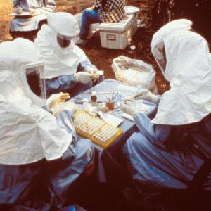 V minulosti se již uvažovalo o použití CBD na terapii post-ebola syndromu. Zdroj: Wikimedia Commons
