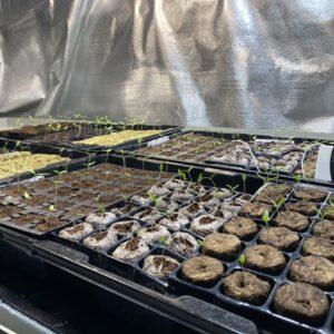 Testovací prostor. Foto: growmarket.cz