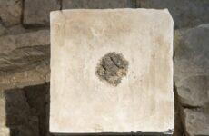 Zbytky konopí ve starověkém chrámu. Foto: Laura Lachman/AP