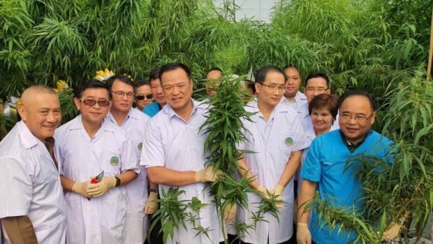 Thajští vládní představitelé na exkurzi v konopném poli. Foto: Jindřich Vobořil