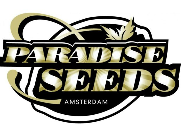 Semena holandských mistrů Paradise Seeds k předplatnému Konopí.