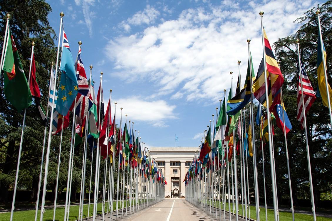 Komise OSN pro narkotika rozhodla v historickém hlasování o vyřazení konopí ze skupiny nejškodlivějších drog.